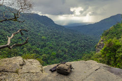 Waterfall starts here. Laos stock image