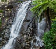 Waterfall. Steavenson Falls waterfall at Marysville Royalty Free Stock Image