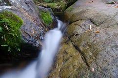Waterfall with stone of green moss in rain forest , Kiriwong Vil. Lage, kamloan, Lansaka, Nakhon Si Thammarat, Thailand royalty free stock images