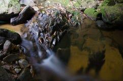 Waterfall with stone of green moss in rain forest , Kiriwong Vil. Lage, kamloan, Lansaka, Nakhon Si Thammarat, Thailand royalty free stock image