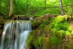 Waterfall stream Stock Photography