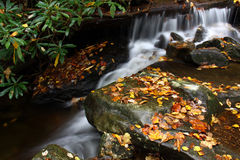 Waterfall and Stream in Autumn Stock Photography