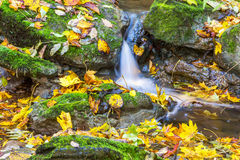 Waterfall in a stream Royalty Free Stock Photo