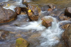 waterfall stream Royalty Free Stock Photos