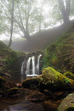 Waterfall on stream in foggy forest Stock Image