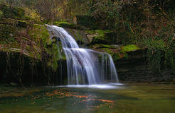 Waterfall in the stream. In the forest Stock Photos