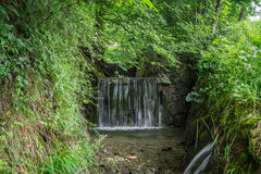 The waterfall on a stream in forest Stock Photography