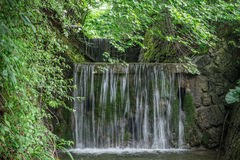 The waterfall on a stream in forest Stock Image