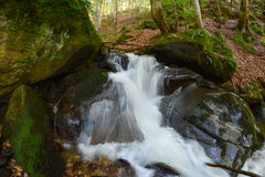Waterfall on stream in the middle of beech forest Stock Images