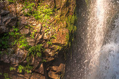 Waterfall stream stones Royalty Free Stock Images