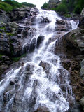 Waterfall in summer stock images