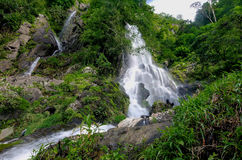 Waterfall in summer forest at  Cha Om, Kaeng Khoi District, Sara Stock Images