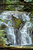 Waterfall in the summer Royalty Free Stock Images