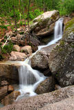 Waterfall in summer woods Stock Photography