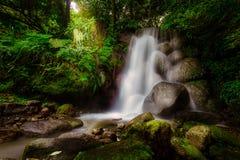 Waterfall on sunrise Stock Photography