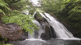 Waterfall surrounded by green forest stock video footage