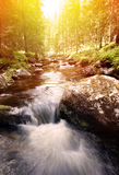 Waterfall in Sweden stock photography