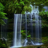 Waterfall in Tasmania 1 Royalty Free Stock Photography