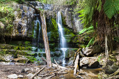 Waterfall Tasmania Royalty Free Stock Images