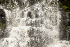 Waterfall in Tasmania Stock Photos