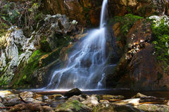 Waterfall in the Tasmanian wilderness. Waterfall in Cradle Mountain National Park in Tasmania, Australia stock images