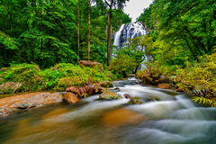 Waterfall in thai national park. In the deep forest Royalty Free Stock Images