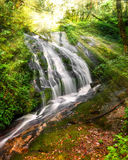 Waterfall. Thailand Stock Photo