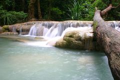 Waterfall in thailand. Lower fall at Erawan, Thailand Royalty Free Stock Photo