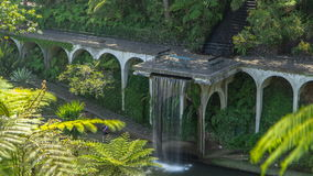 Waterfall timelapse. Views of tropical gardens in stock video