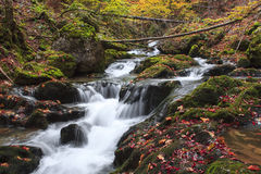 Waterfall in Transylvania. Autumn colors of a waterfall in Transylvania Royalty Free Stock Photography