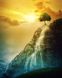 Waterfall tree. A single tree on top of a mountain with a waterfall Stock Photography