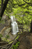 Waterfall Through Trees. Felkers Falls from the top of the gorge Royalty Free Stock Image