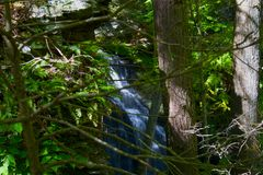Waterfall With Trees stock image