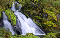 Waterfall, Triberg, Black Forest, Germany Stock Photo