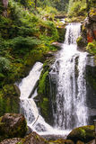 The waterfall of Triberg in Germany, black forest Royalty Free Stock Photography