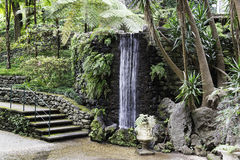 Waterfall in tripcal garden Monte Madeira Royalty Free Stock Photography