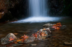 Waterfall, Troodos Cyprus stock image
