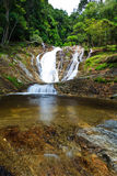 Waterfall in a tropical forest Royalty Free Stock Images