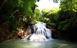 Waterfall. In the tropical forest Royalty Free Stock Image
