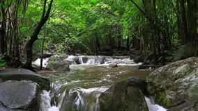 Waterfall in tropical forest. Rainrorest stock video footage