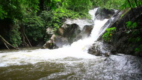Waterfall in tropical forest. Green forest stock footage