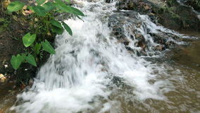 Waterfall in tropical forest. Waterfall in thailand tropical forest stock video footage