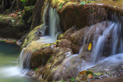 Waterfall in the tropical forest Royalty Free Stock Photo