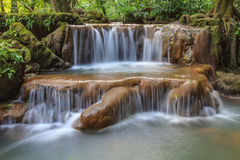 Waterfall in the tropical forest Royalty Free Stock Images