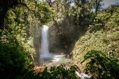 Waterfall in tropical garden in Costa Rica. Waterfall `The Magic` located in Peace Waterfall Garden in Costa Rica. In Tropical forest Stock Images