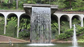 Waterfall in  tropical garden in Madeira. Waterfall in the tropical garden in Madeira stock video footage