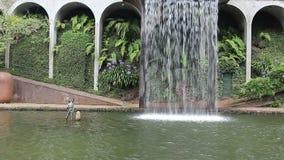 Waterfall in  tropical garden in Madeira. Waterfall in the tropical garden in Madeira stock video