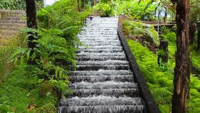 Waterfall in  tropical garden in  Madeira. Waterfall in a tropical garden in  Madeira stock footage