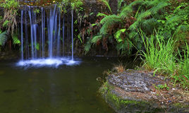 Waterfall in tropical garden Stock Photography