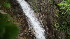 Waterfall in the tropical jungle Stock Photography